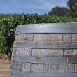 Wine Barrel and Vineyard — Stock Photo #11061113