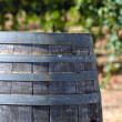 Wine Barrel and Vineyard — Stock Photo