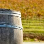 Wine Barrel in Fall — Stock Photo