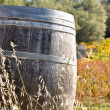 Wine Barrel in Fall — Stock Photo #11063585