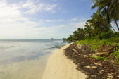 Caribbean Beach in Ambergris Caye, Belize — Stock Photo