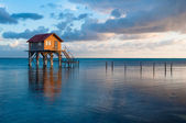 Home on the Ocean in Ambergris Caye Belize — Stock Photo