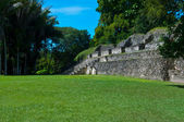 Xunantunich Belize Mayan Temple — Stock Photo