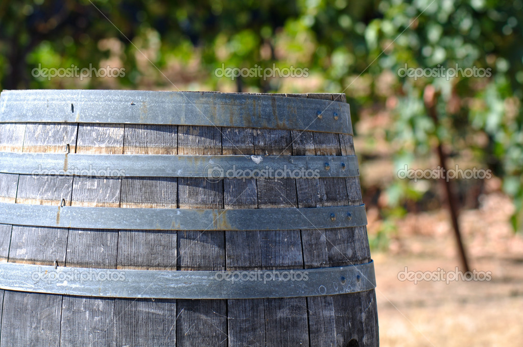 Wine Barrel and Vineyard — Stock Photo #11061124