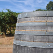 Wine Barrel and Vineyard — Stock Photo
