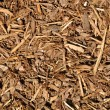 Mulch Background — Stock Photo #11118460