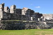 Maya-ruinen in tulum mexiko — Stockfoto