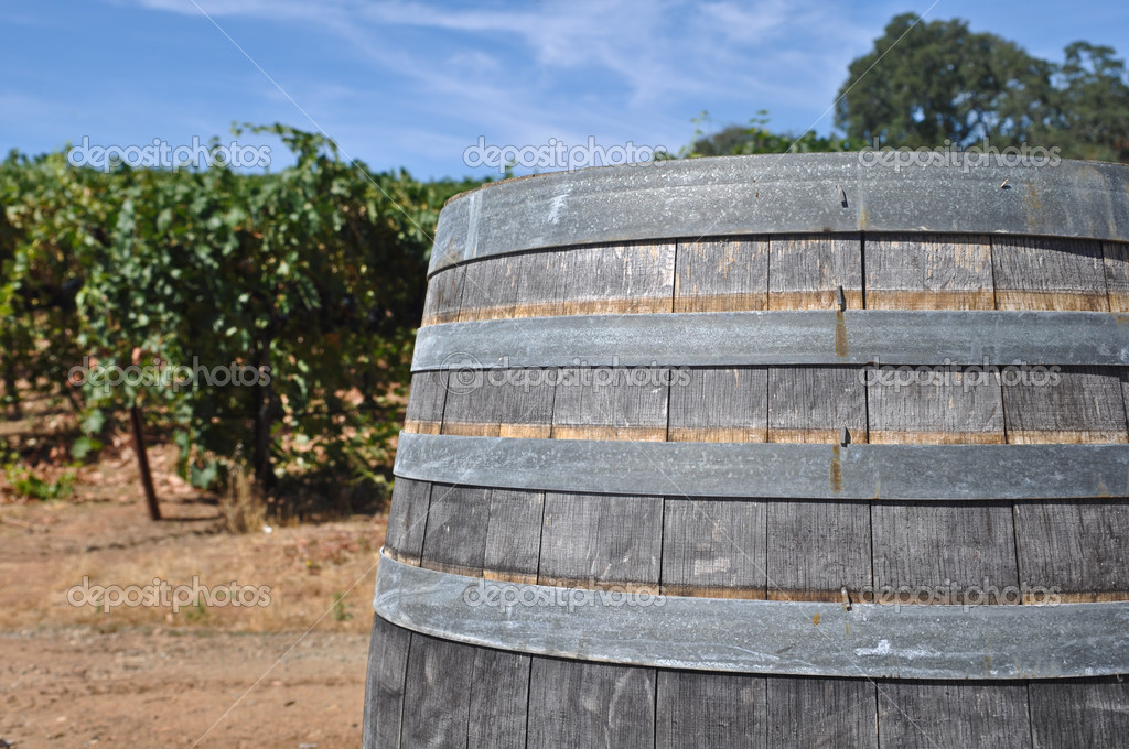 Wine Barrel and Vineyard — Stock Photo #11118072