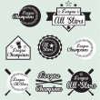 Vector Set of All Star and League Champions Labels — Stock Vector #11469860