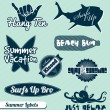Vector Set: Surf Summer Labels - Stock Vector