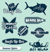 Vector Set: Surf Summer Labels — Stock Vector