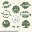 Vector Set: 100% Renewable Resource Labels — Stock Vector