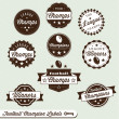 Vector Set: Football Champions Labels — Stock Vector #11635966