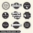 Vector Set: Fantasy Football League Champion Labels — Stock Vector #11641728