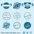 Vector Set: Winter Sale Shopping Labels — Stock Vector #11774841