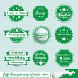 Vector Set: Golf Champion Labels — Stock Vector #11815781