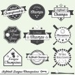 Vector Set: Softball League Champions Labels — Vecteur