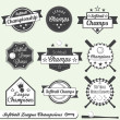Vector Set: Softball League Champions Labels - Stock Vector