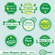 Vector Set: International Tennis Champ Labels — Stock Vector