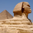 Sphinx against pyramids — Stock Photo