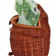 Cash euros in a wattled frog. — Stock Photo