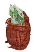 наличными евро в плетеной лягушка. — Стоковое фото
