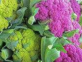Colorful cauliflower — Stock Photo