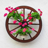 Carriage wheel with flowers — Stock Photo