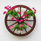 Roda de carruagem com flores — Foto Stock