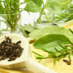 Aromatic herb — Stock Photo
