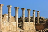 The ancient Greek agora. Cyprus. Paphos — Stock Photo