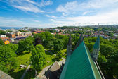 View of the city of Trondheim — Stock Photo