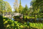 Oude brug in herfst mistige park — Stockfoto