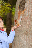 Feeding of a squirrel — Stock Photo