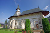 Putna Monastery — Stok fotoğraf