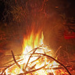 Camp fire — Stock Photo