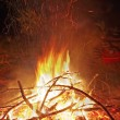 Camp fire — Stock Photo #11612626