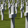 American war graves — Stock Photo