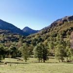 Picos de Europa — Stock Photo #11278568
