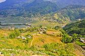 Landscape of rice terraced fields — Stock Photo