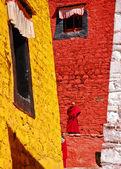 Parlak renkli Tibet bina — Stok fotoğraf