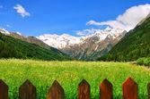 Pflersch valley 01 — Stock Photo