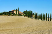 Podere im Herbst - Podere in fall 03 — Stock Photo