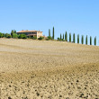 Podere in fall 04 - Stock Photo