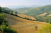 Umbria field in fall 01 — Stock Photo