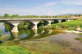 Frias new bridge 01 — Stockfoto