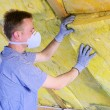 Mineralwolle - mineral rock wool 04 — Stock Photo