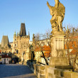 Stock Photo: Charles Bridge 08