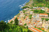 Cinque Terre Riomaggiore 03 — Zdjęcie stockowe