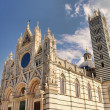 Siena cathedral 01 — Stock Photo